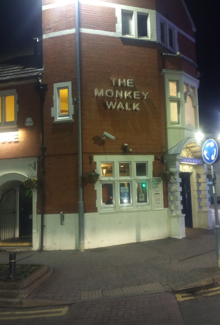 Monkey Walk 01.02.18 (5)
