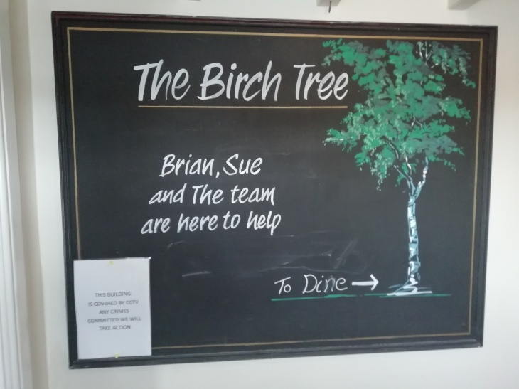 Birch Tree 18.07.18  (23).jpg