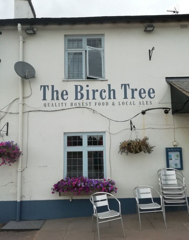 Birch Tree 18.07.18  (35).jpg