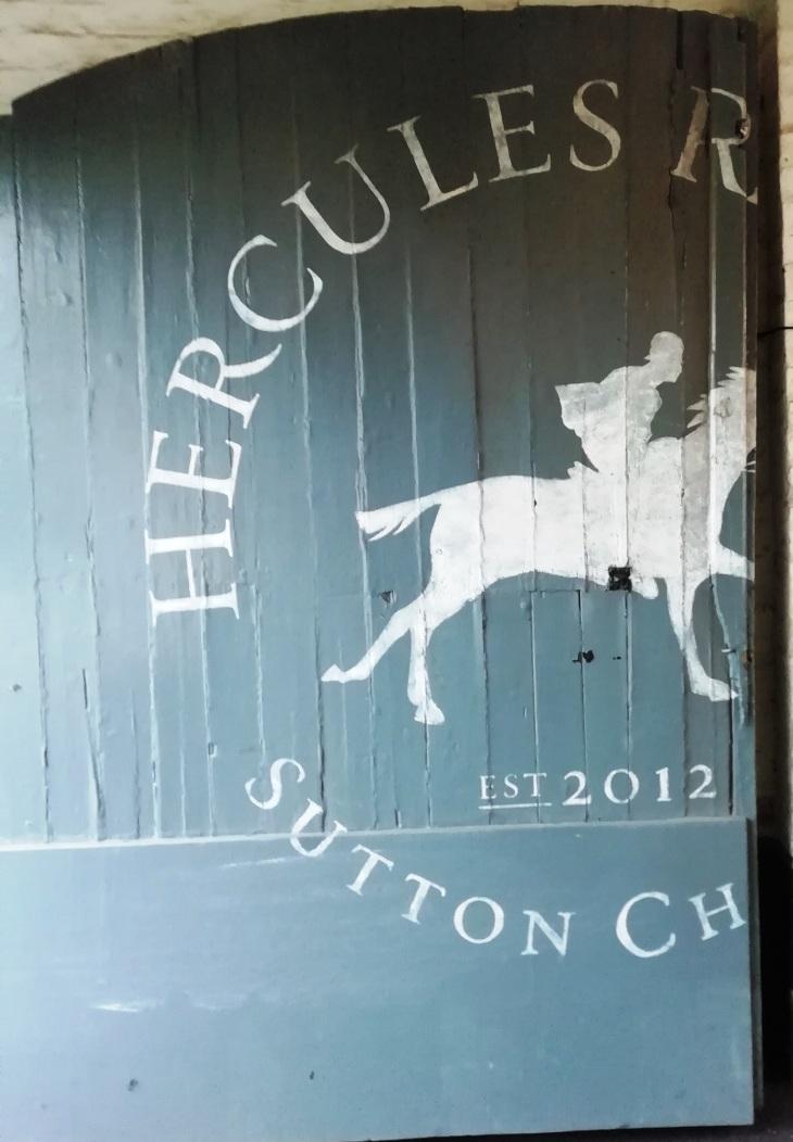 Sutton Hercules 13.06.19  (19).jpg