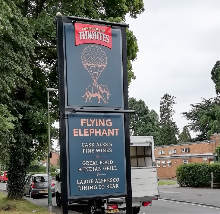 Elephant 15.08.20 (18)